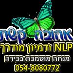 nlp, nlp דמיון מודרך,תת מודע,טיפול רגשי,מחשבות שליליות,מחשבה יוצרת מציאות,nlp מה זה,nlp מטפלים,טיפול רגשי,